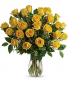 24 Yellow Please Roses  Rose Arrangement