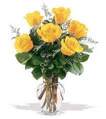 Yellow Rose Half Dozen Arrangement