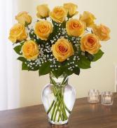 Yellow Roses Dozen Rose Vase