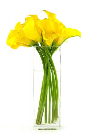 Yellow Siamens Callas one sided in Falls Church, VA   Geno's Flowers