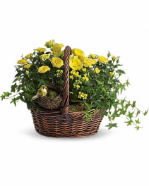 Yellow Trio Basket Basket Flower