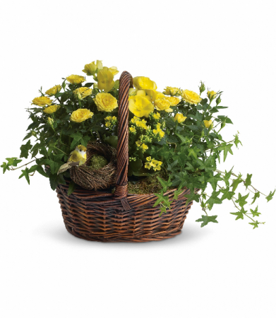 Yellow Trio Basket H941A