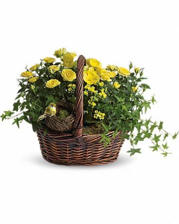 Yellow Trio Basket T94-1