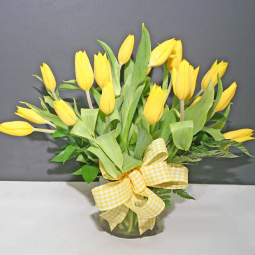 YELLOW TULIPS  MEDIUM