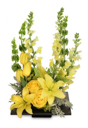 YOLO Yellow Arrangement in Pembroke, MA | CANDY JAR AND DESIGNS IN BLOOM