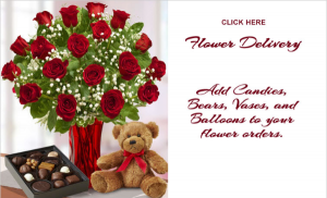 You are Extraordinary Premium Rose with Bear and Chocolate in Stratford, CT | Booth House Florist / Blossoming Blessings