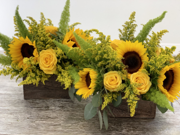 you are my sunshine one arrangement
