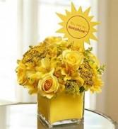 You are my Sunshine All Around