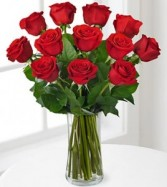 You are my Valentine 1 Dx Red Roses