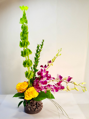 You Are Treasured  Dendrobium Orchid Design in White Oak, PA | Breitinger's Flowers & Gifts
