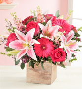You Make My Dreams Come True Dreamy Lilies, Roses, & Other Fabulous Pink Blooms