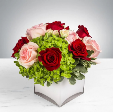 YOUNG LOVE RED & PINK ROSES WITH GREENERY