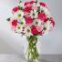 Mix carnations in vase one dozen mix carnations in vase