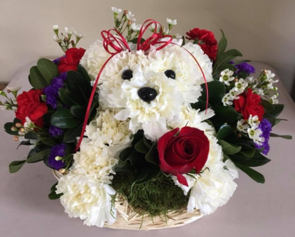 Your Doggone Special Valentine S Day In Cicero Hittle