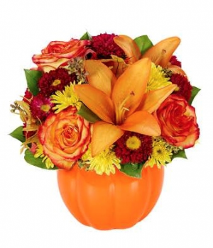 You'r my Pumpkin  SPECIAL OF THE MONTH  in Saint Cloud, FL | Bella Rosa Florist