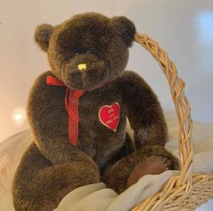 You're My Hero Bear Plush in Arlington, TX   Erinn's Creations Florist