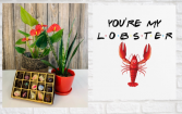 You're My Lobster  Red Anthurium, Plant and Chocolates Bundle