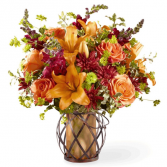 You're Special FTD Arrangement
