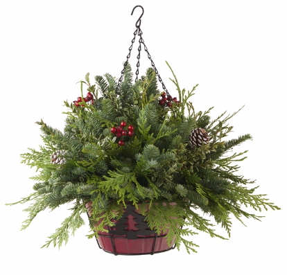 Christmas Hanging Baskets.Forget Me Not Flowers And Gifts Llc