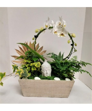 Zen and The Art of Orchids  in Tottenham, ON | TOTTENHAM FLOWERS & GIFTS