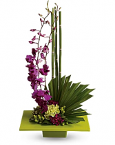 Zen Aristry Fresh Floral Arrangement