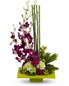 Zen Artistry   in Fort Lauderdale, FL | ENCHANTMENT FLORIST