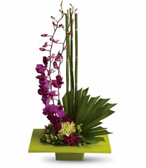 Zen Artistry Fresh Arrangement in Rossville, GA | Ensign The Florist