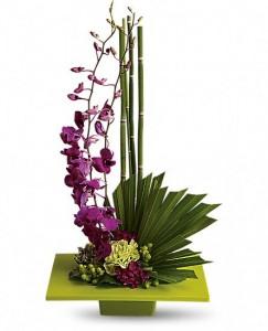 Zen Artistry Fresh Arrangement in Storrs, CT | THE FLOWER POT