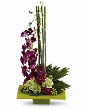 Zen Orchid Bloom Flower Arrangement