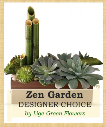 Zen Garden - Succulents Designer's Choice