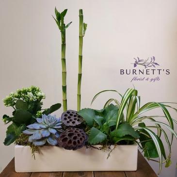 Zen Planter Planter