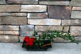 Zen Roses Contemporary Rose Arrangement