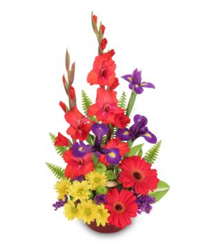 Zest for Life Bouquet in Mobile, AL | ZIMLICH THE FLORIST