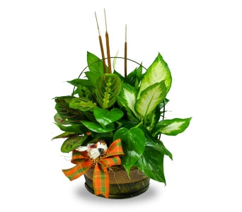 Planters with seasonal fresh or silk flowers added Containers are usually baskets or tin containers.