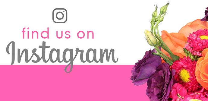 Follow Us Now!