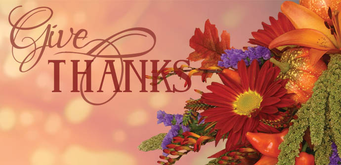 Shop Thanksgiving Flowers Now